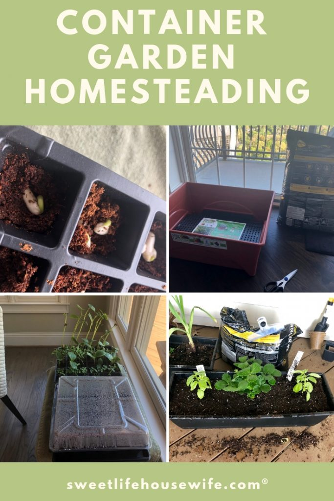 Homesteading Project